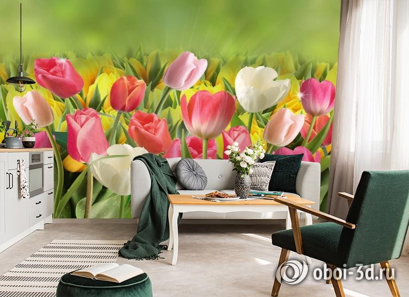 3D Фотообои  «Тюльпаны с каплями росы»  вид 7