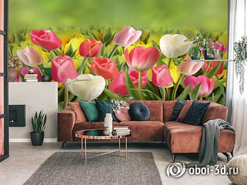 3D Фотообои  «Тюльпаны с каплями росы»  вид 3