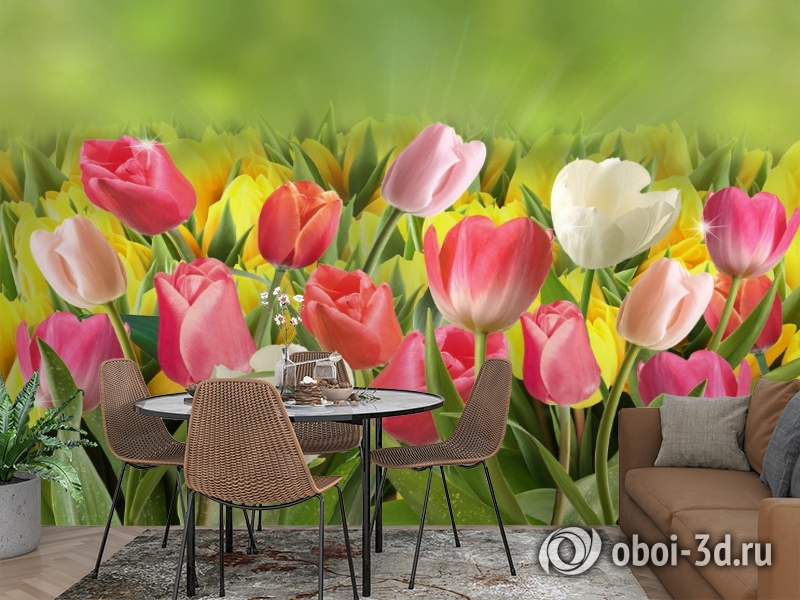 3D Фотообои  «Тюльпаны с каплями росы»  вид 2