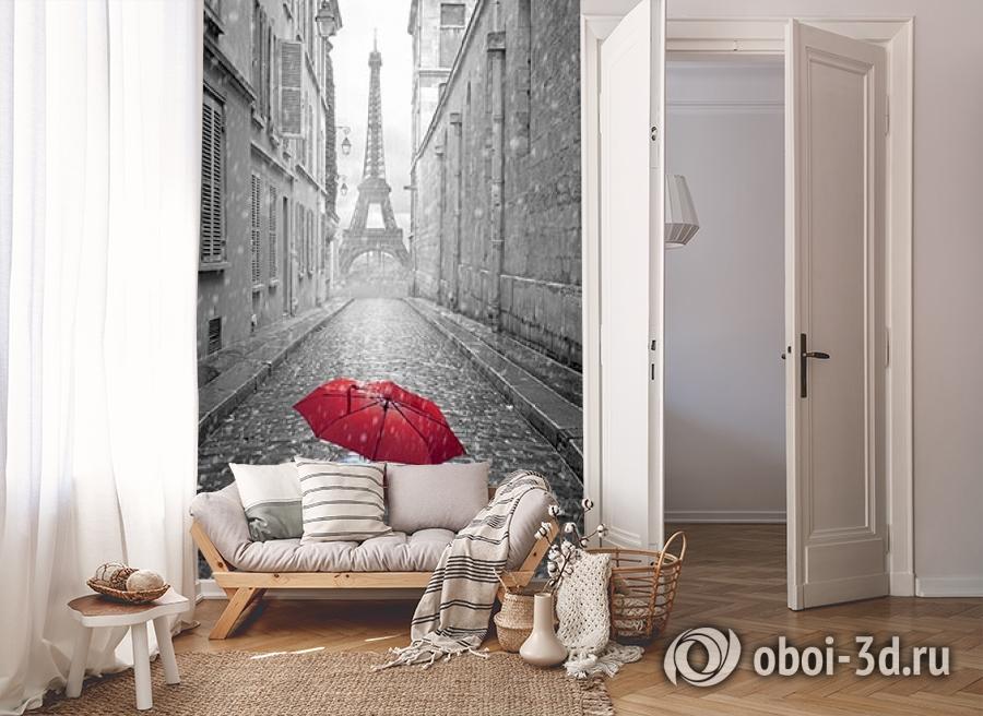 3D Фотообои «Дождь в Париже» вид 8