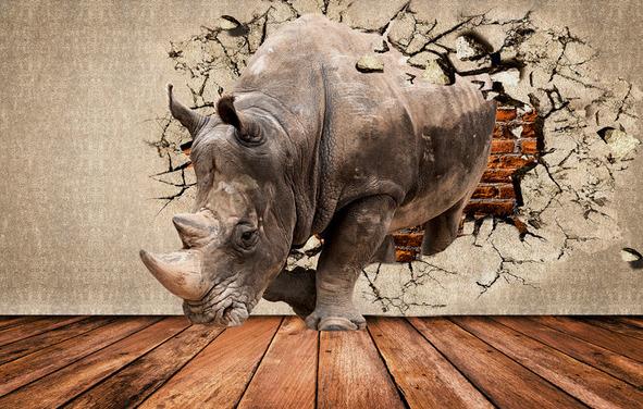 3D Фотообои 3D Фотообои «Носорог сквозь стену»