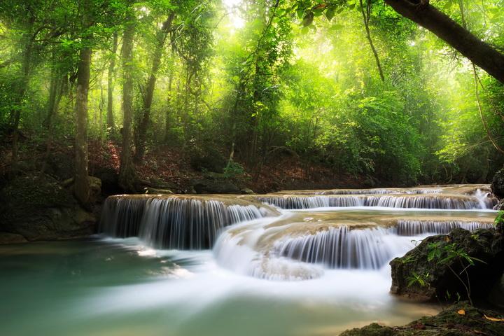 3D Фотообои 3D Фотообои  «Водопад в солнечном лесу»
