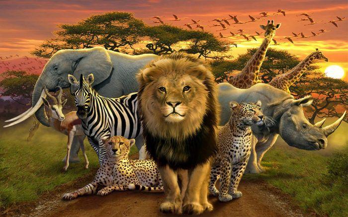 3D Фотообои 3D Фотообои «Животные саванны»