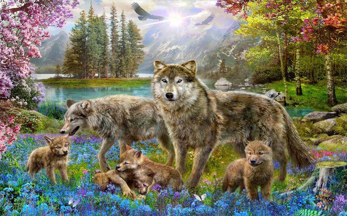 3D Фотообои 3D Фотообои «Волки в весеннем лесу»