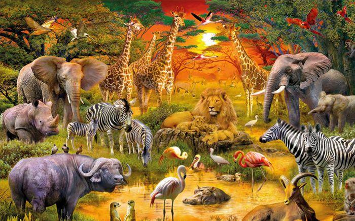 3D Фотообои «Животные Африки»