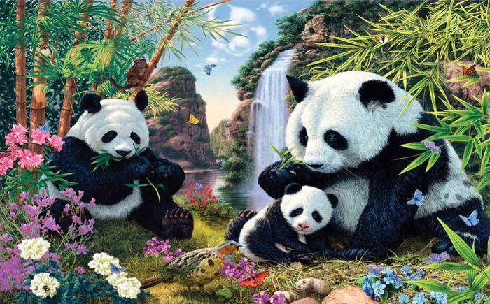 3D Фотообои 3D Фотообои «Семейство панд»