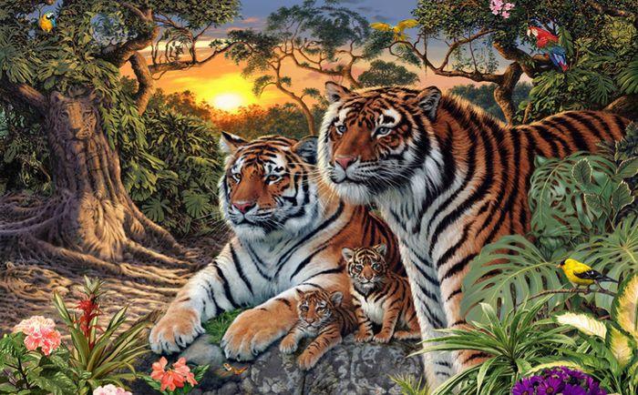 3D Фотообои 3D Фотообои «Тигриная семья. Закат»