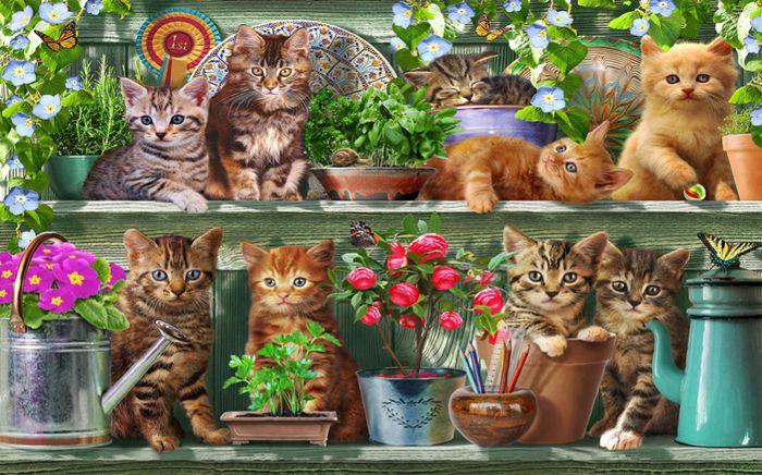 3D Фотообои 3D Фотообои «Озорные котята»
