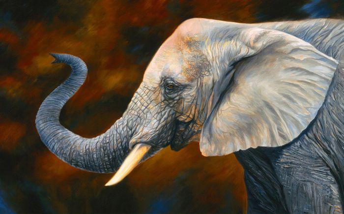3D Фотообои 3D Фотообои «Слон. Рисунок»