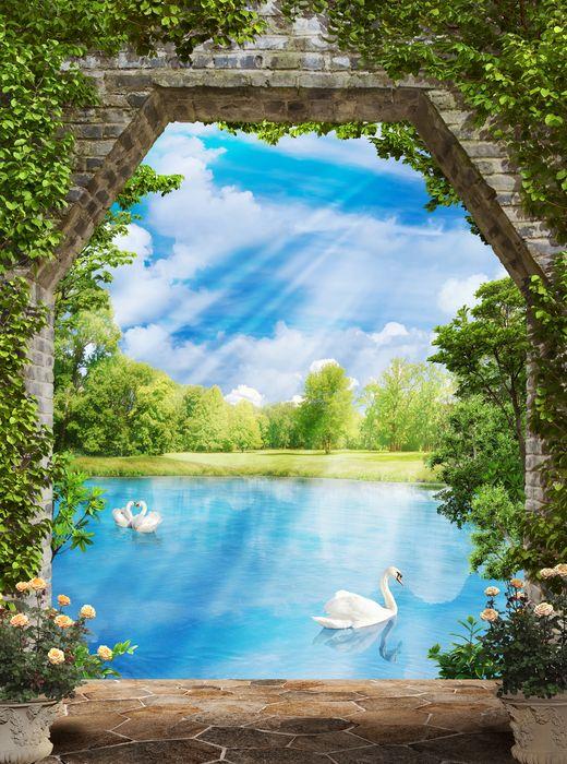 3D Фотообои 3D Фотообои «Арка с видом на лазурный пруд с лебедями»
