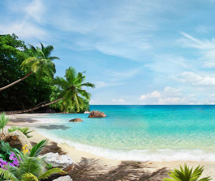 3D Фотообои 3D Фотообои «Тропический пляж»