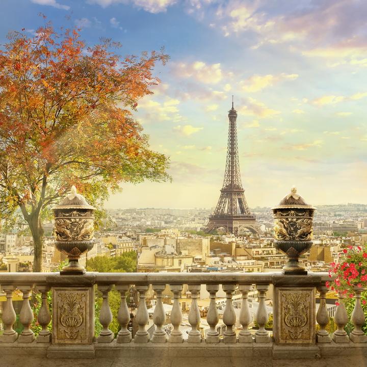 3D Фотообои 3D Фотообои  «Фреска Париж»