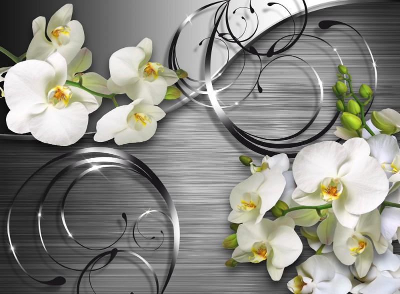 пожалуйсто красивые картинки для кухни цветы беззеркалок