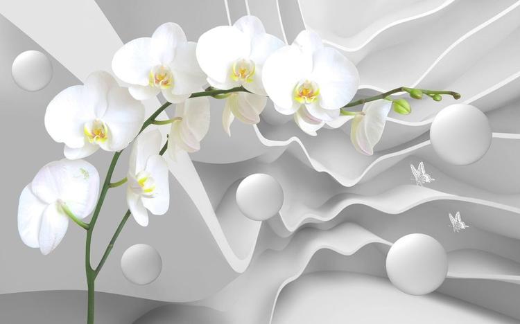 3D Фотообои 3D Фотообои «Белая орхидея на объемном фоне»