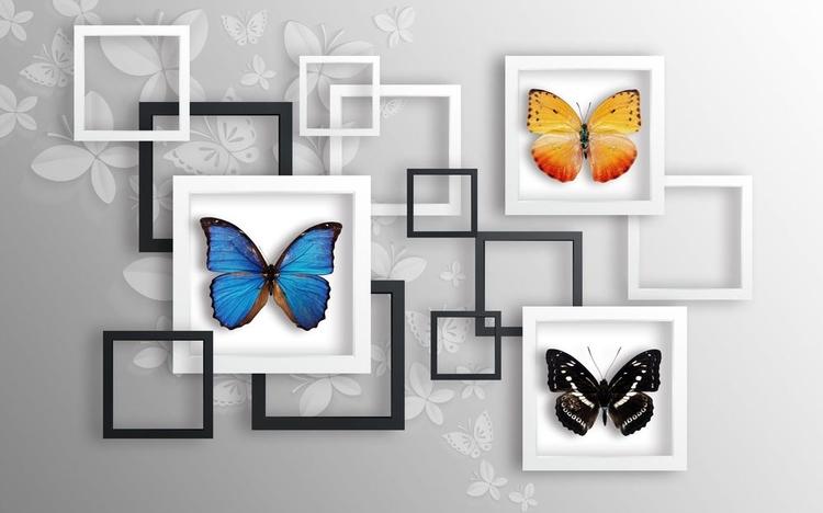 3D Фотообои «Коллекция бабочек»
