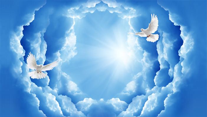 3D Фотообои 3D Фотообои «Птицы в небе»