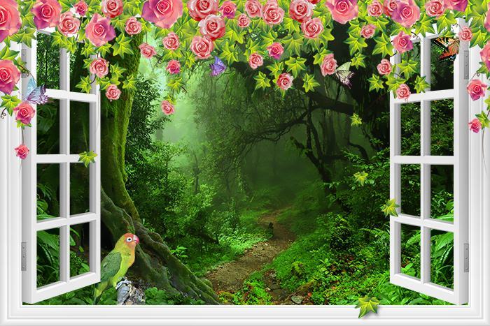 3D Фотообои «С видом из окна на тропический лес»