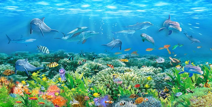 3D Фотообои 3D Фотообои «Яркие водоросли»