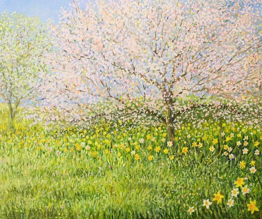 3D Фотообои «Цветущие деревья»